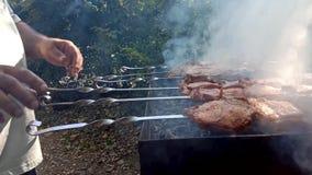Fragment de faire cuire le barbecue en nature avec mains du plan rapproché de cuisinier Fermez-vous des mains tenant parfumé déli clips vidéos