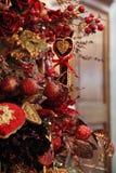 Fragment de l'arbre de Noël Images stock