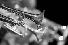 Fragment de trompette dans le plan rapproché d'orchestre images stock