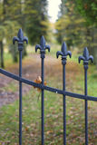 Fragment of a decorative fence in autumn park Royalty Free Stock Image