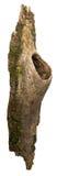 Fragment der Barke mit einer Höhle stockfotos