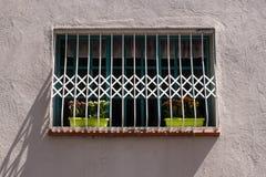 Fragment der Weinlesewand mit kratzendem Fenster und eingemachten Blumen Tel Aviv, Israel Lizenzfreie Stockbilder