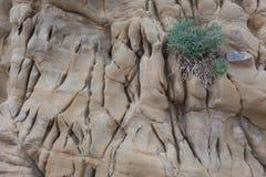 Fragment des alten Steins oder des Felsens Stockfoto