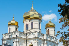 Fragment with the domes of the Orthodox Church, Stavropol Stock Photos