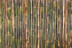 Fragment du mur en bambou pour le fond Images stock