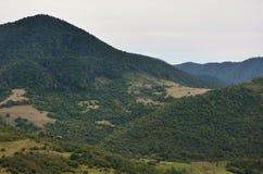 Fragment du terrain montagneux dans les Carpathiens, Ukraine La forêt est pardonnée par les soulagements des montagnes carpathien images stock