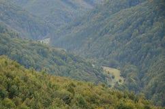 Fragment du terrain montagneux dans les Carpathiens, Ukraine La forêt est pardonnée par les soulagements des montagnes carpathien photos libres de droits