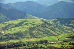 Fragment du terrain montagneux dans les Carpathiens, Ukraine La forêt est pardonnée par les soulagements des montagnes carpathien photographie stock