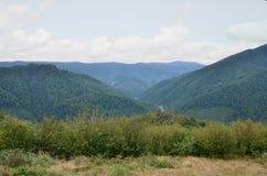 Fragment du terrain montagneux dans les Carpathiens, Ukraine La forêt est pardonnée par les soulagements des montagnes carpathien photographie stock libre de droits