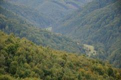 Fragment du terrain montagneux dans les Carpathiens, Ukraine La forêt est pardonnée par les soulagements des montagnes carpathien image stock