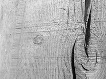 Fragment einer Stange mit lizenzfreies stockbild