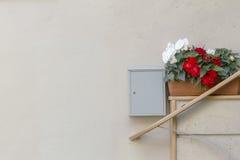 Fragment einer Wand durch Eingang zum Haus mit Blumentöpfen und Postbox Lizenzfreies Stockfoto