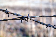 Fragment of fence with barbed wire Royalty Free Stock Photos