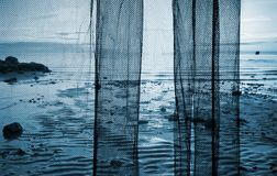 Fragment of a fishing net above sea landscape Stock Photography