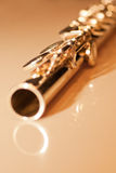 Fragment flute Royalty Free Stock Photo