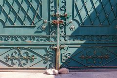 Fragment forged iron gate closed with a padlock Royalty Free Stock Photos