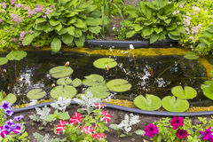 Fragment garden with an artificial pond Royalty Free Stock Photos