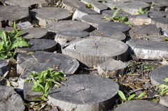 Fragment of garden decor of wood scraps round logs (landscape) Stock Image