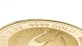 A fragment of a gold coin. Weighing 2 troy ounce isolated on white. Selective focus royalty free stock images