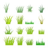 Fragment of a green grass. Vector illustration, isolated on a white. Fragment of a green grass. Vector illustration, isolated on a white Stock Illustration