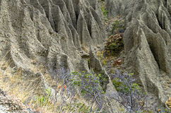 Fragment of a hillside with traces of severe soil erosion. Royalty Free Stock Images