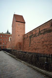 The fragment of the historical wall of Riga Royalty Free Stock Photography