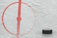 Fragment of the hockey arena with a central circle and washer Royalty Free Stock Photo
