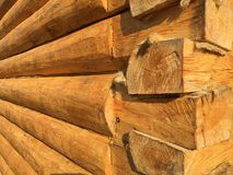 A fragment house from logs in a paw Stock Photo