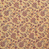 Fragment of Indian pashmina shawl pattern Royalty Free Stock Photo