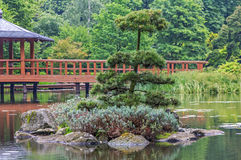 Fragment of a japanese garden Royalty Free Stock Photo