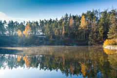 Fragment of the lake in the autumn forest Royalty Free Stock Photo