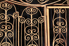 Fragment of the metal door lattice Royalty Free Stock Images