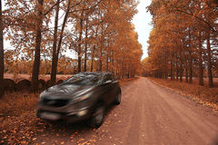 Fragment of the modern car Royalty Free Stock Photo