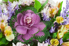 Fragment Of Colorful Flower Bouquet Isolated On White Background Stock Images