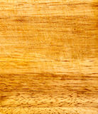 Fragment Of Wood Oak Stock Image
