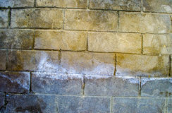 Fragment of old dirty brick wall with peeling plaster texture white grey brown black green blue lime yellow orange maroon violet p Royalty Free Stock Image