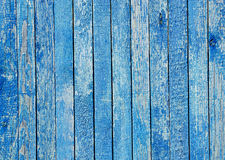 Fragment of an old fence. Cracked azure paint texture. Light blue wooden planks background. Stock Photography