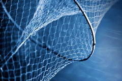 Fragment of an old fishing net. Underwater fragment of an old fishing net Stock Photos