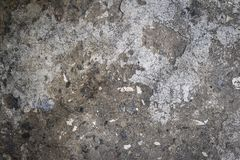 Fragment of an old gray cement wall with black stones Royalty Free Stock Photo