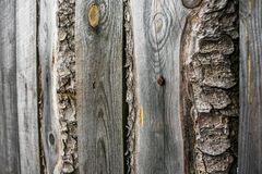 Fragment of an old grey rough-hewn fence. Wooden texture. Texture, background.Old unpainted wood surface. Wooden plank royalty free stock photography