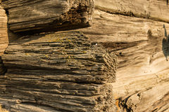 Fragment of  an old log cabin. A corner of an old log cabin is a dwelling constructed of logs Royalty Free Stock Photography