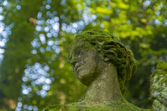 Fragment of old statues - moss-covered woman's head Stock Photos