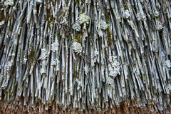 A fragment of the old thatched roof. Texture, background Royalty Free Stock Photo