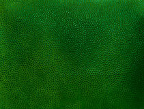 Fragment of old vintage green leather background Royalty Free Stock Image