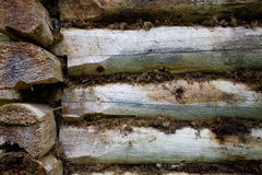 Fragment of old wall of the house of timber Royalty Free Stock Photography