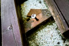 Fragment of old wooden brown broken bench with spike in it. Old rusted wooden bench with spike royalty free stock photography