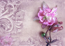 Fragment of ornate relief with flower. Stock Photos