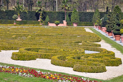 Fragment of the park in Ludwigsburg, Baden-Wurttemberg, Germany. Park composition of the bushes of the waveform and trees in pots Stock Photo