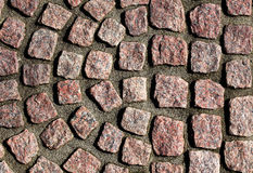 Fragment of pavement in the sunlight Stock Images