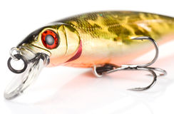 Fragment of plastic fishing lure Stock Images
